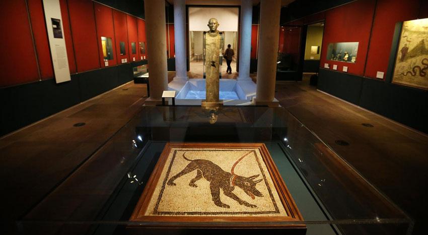 Museo Archeologico Virtuale - Ercolano