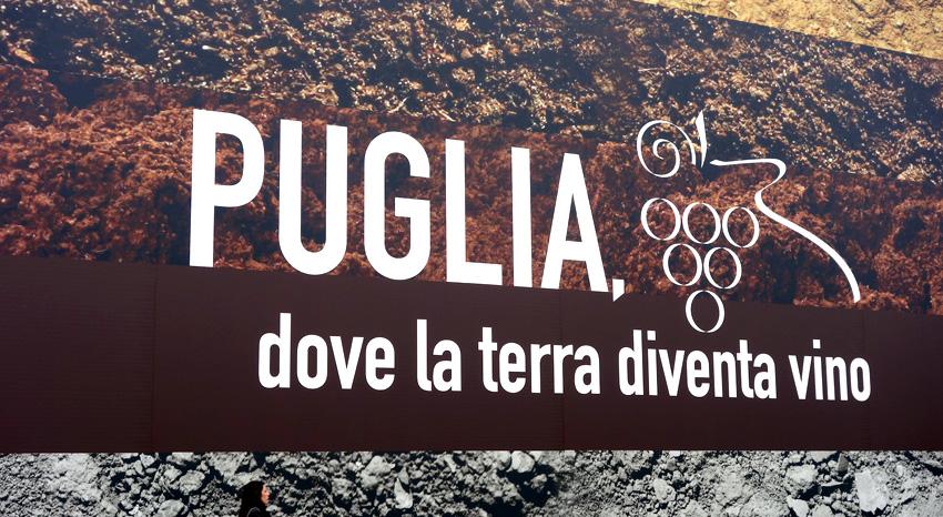 Wine tasting Puglia